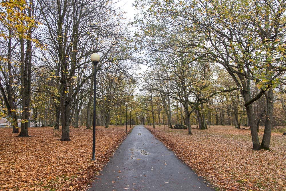 Näkymä kadriorgin puistossa syksyllä 2018
