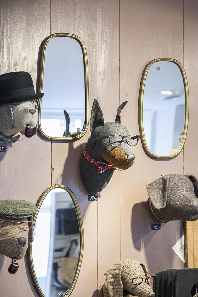 Hauskoja koiran päitä sisustuskaupassa tallinnassa