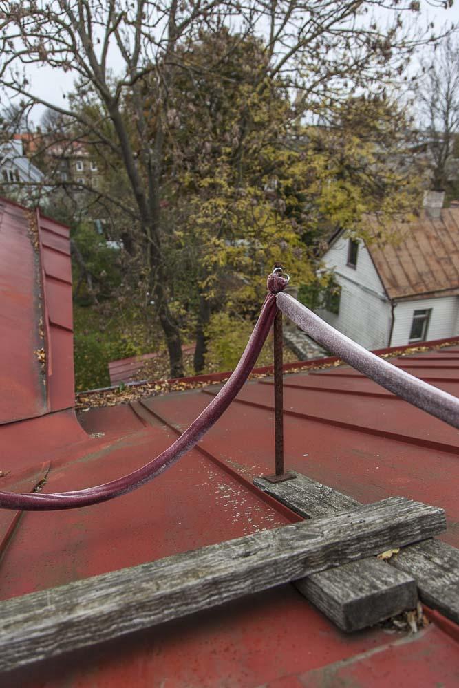 Näkymä flo kasearu museon katolta