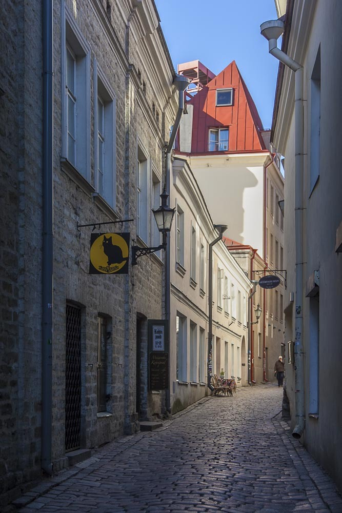Must puudel ravintola, baari ja kahvila on muurivahe kadulla tallinnan vanhassa kaupungissa