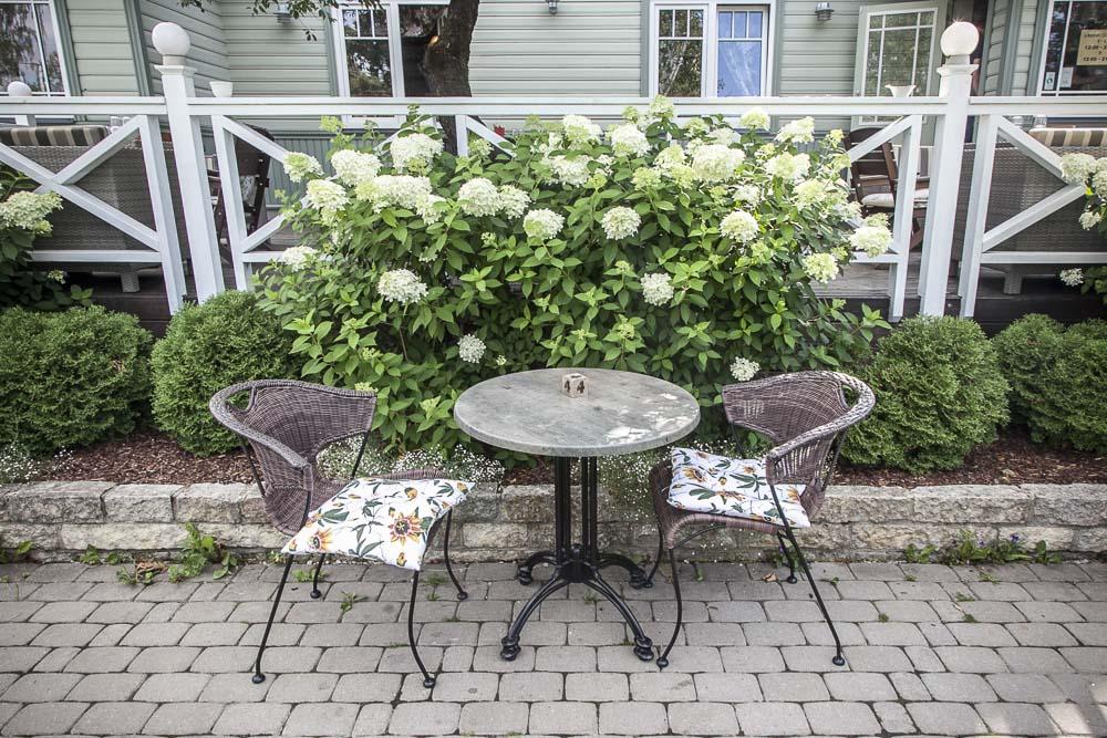 mimosa ravintolan pihalla kauniita hortensioita