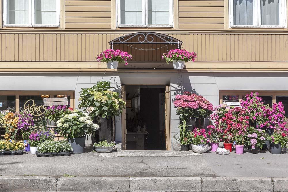 Kukkakauppa Pojeng kalamajassa