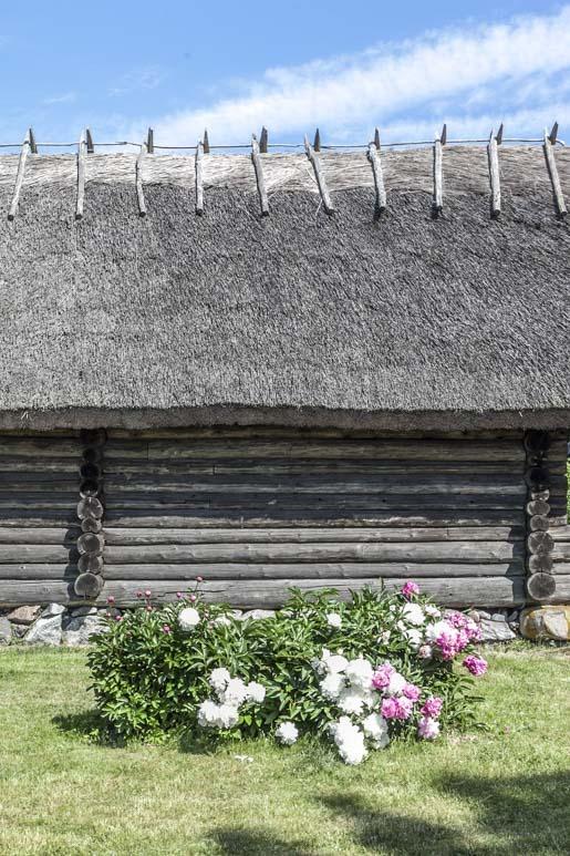 Aitta ulkoilmamuseossa Tallinnan lähellä