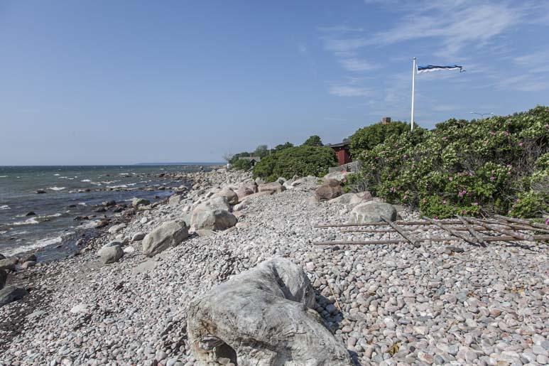 Viimsin ulkoilmamuseon ranta